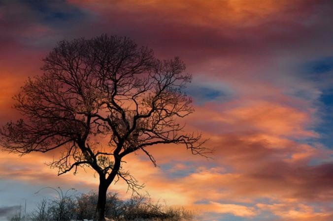 dramatic-sky-210776_1280