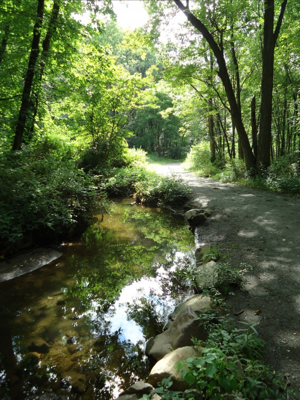 Loantaka_Brook_Reservation_bikeway_horse_path_and_stream_and_reflections