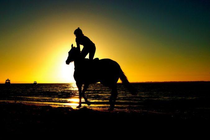 riding-768586_1280